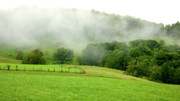 Fence Post Prints - Rising Mist over Pasture Field Print by Thomas R Fletcher