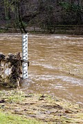 River Flooding Photo Posters - Rising River Level Poster by Mark Williamson