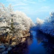Snowed Trees Photo Prints - River Bann, Co Armagh, Ireland Print by The Irish Image Collection