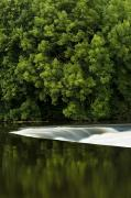 Trees Reflecting In Water Prints - River Boyne, County Meath, Ireland Print by Peter McCabe