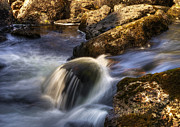 Svetlana Sewell - River Flows 02