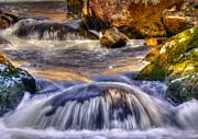 Svetlana Sewell - River Flows