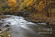 Water In Creek Posters - River In The Fall Poster by Ted Kinsman