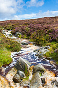 Dry Lake Photos - River in Wicklow Mountains by Semmick Photo