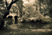 Duotone Prints - River of Dreams Print by Jessica Jenney
