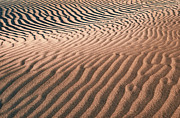Sand Dunes Posters - River of Sand - Death Valley Poster by Sandra Bronstein