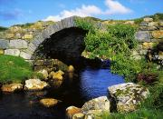 Arched Bridge Photos - River Owenwee, Poisoned Glen, Co by The Irish Image Collection