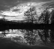 E Black Framed Prints - River Reflections Framed Print by Darren Burroughs