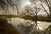 Foggy Day Originals - River reflections by James O Donnell