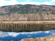 North Thompson Photos - River Reflections by Will Borden