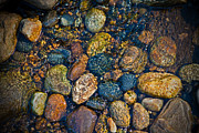 River Rock Print by Karol  Livote