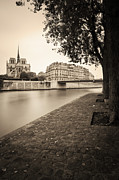 Ile De La Cite Art - River Seine and Cathedral Notre Dame by Brian Jannsen