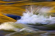 Flowing Prints - River Print by Silke Magino