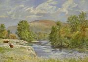 River Spey - Kinrara Print by Tim Scott Bolton