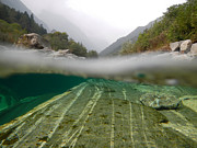 Under Water Photos - River surface by Mats Silvan