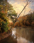 Autumn Landscape Art - Riverbank 1 by Jai Johnson
