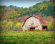 Hartsburg Posters - Riverbottom Barn in Fall Poster by Cricket Hackmann