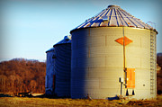 Grain Bin Posters - Riverbottom Grain Bins Poster by Cricket Hackmann