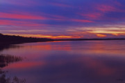 Sunset Framed Prints Framed Prints - Rivers Edge Framed Print by Phill  Doherty