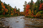 Saco Framed Prints - Rivers run through it..fall brilliance Framed Print by Lloyd Alexander