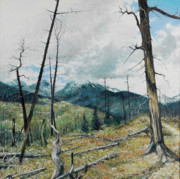 Burnt Drawings Posters - RMNP Wild Basin Poster by Robert Sunderman
