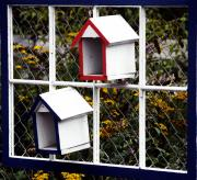 Frame House Photos - RMwView by Robert Trauth