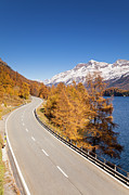 Graubunden Framed Prints - Road Along Lake Sils With Piz Corvatsch, Engadin, Switzerland Framed Print by F. Lukasseck