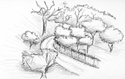 Italian Landscape Drawings - Road from Todi by Elizabeth Thorstenson