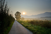 Mountain Road Prints - Road in sunrise Print by Mats Silvan