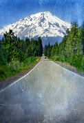 Snow Covered Pine Trees Prints - Road Leading to Snow Covered Mount Shasta Print by Jill Battaglia