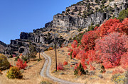 4x4 Art - Road Less Traveled - Blacksmith Fork Canyon - Utah by Gary Whitton