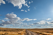 Wyoming Photo Prints - Road Near Ten Sleep Wyoming Print by Steve Gadomski