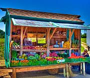 Farm Stand Framed Prints - Road Side Fruit Stand Framed Print by William Wetmore