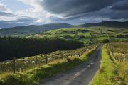 Mountain Road Prints - Road Through Glenelly Valley, County Print by Gareth McCormack