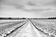 Winter Landscape Prints - Road Through Snow Landscape Print by Xamah Image