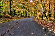 Leading Photos - Road to Autumn by Darren Fisher
