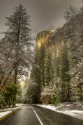 Fog Glow Framed Prints - Road to El Capitan after Snow Storm at Sunrise Framed Print by Connie Cooper-Edwards