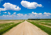 Country Road Posters - Road to Nowhere Poster by Bob Mintie
