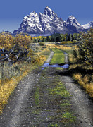 Split Rail Fence Prints - Road to the Tetons Print by Dave Mills