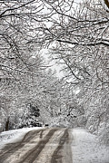Snowy Art - Road to Winter by Deborah Smolinske