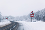 Conditions Posters - Road with Reduce speed now sign during snow fall Poster by Richard Thomas