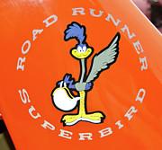 Roadrunner Print by Guy Whiteley