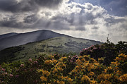 Mountain Photographs Prints - Roan Mountain Afternoon Print by Rob Travis