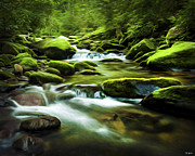 Smokey Mountains Digital Art Posters - Roaring Fork Stream in Summer Poster by Smokey Mountain  Art
