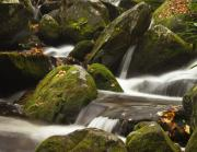 Moss Green Prints - Roaring Fork Waterfall Print by Andrew Soundarajan