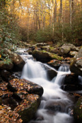 Autumn Woods Metal Prints - Roaring Fork Waterfall at Autumn Metal Print by Andrew Soundarajan