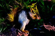 Sciurus Niger Prints - Robbie the squirrel - 7839 - Fractal Print by James Ahn