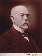 Laureates Framed Prints - Robert Koch 1843-1910 German Physician Framed Print by Everett