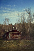 Log House Prints - Robert Service Cabin Print by Priska Wettstein