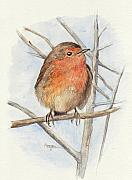 Animal Mixed Media Metal Prints - Robin Metal Print by Morgan Fitzsimons